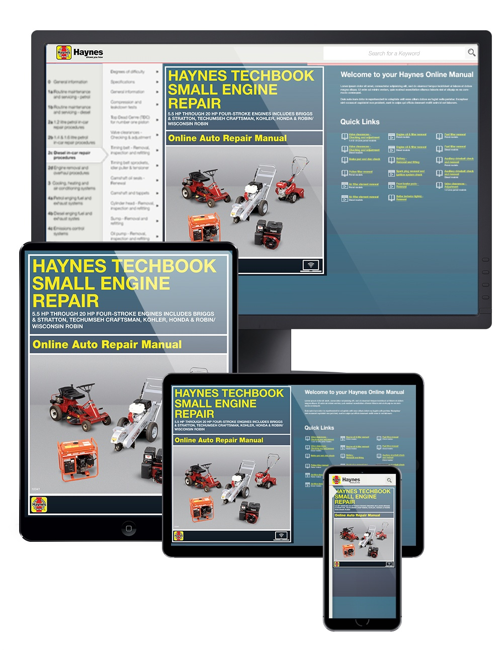 ... Small Engine Repair 5.5 HP through 20 HP Haynes Online Techbook.  Enlarge ...