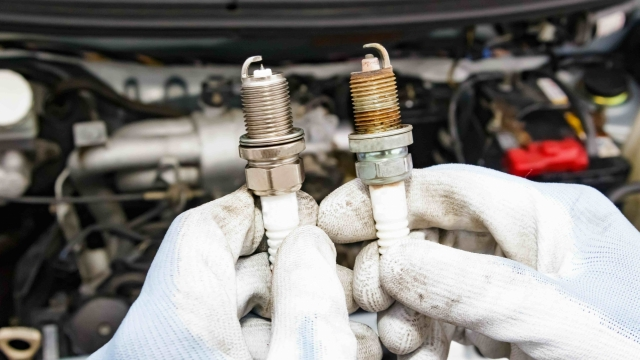 are spark plugs universal