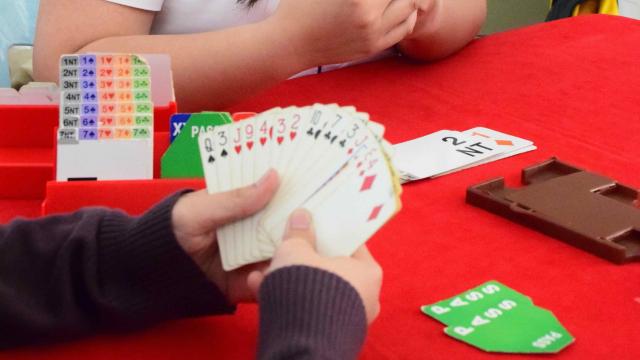 how to start playing bridge
