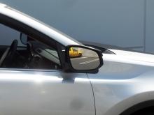 fixed mirror