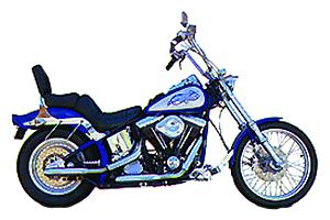 Picture of Harley-Davidson Evolution Big Twins