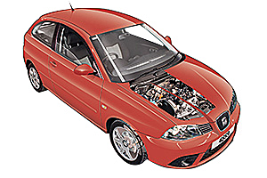 Picture of Seat Ibiza 2002-2008