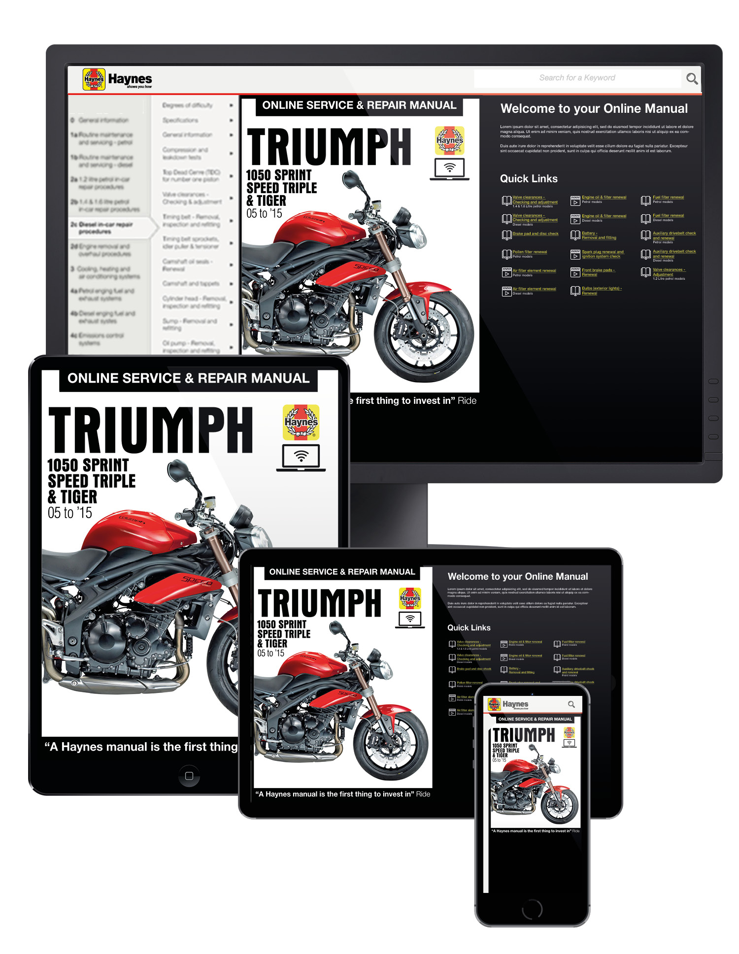 Triumph Sprint St Wire Diagram Electrical Wiring Diagrams 2015 Thruxton 1050 Speed Triple Tiger 2005 Haynes 2003