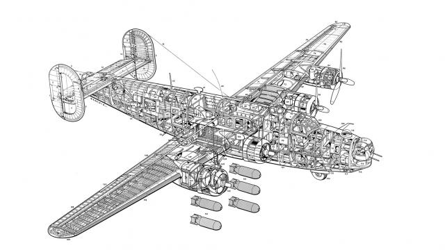 The anatomy of a Consolidated B-24 Liberator