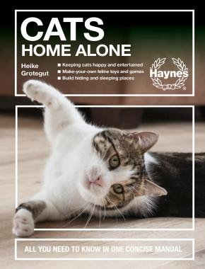 Cats Home Alone