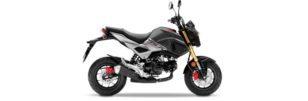 Haynes publishes new Service and Repair Manual for Honda MSX125 Grom models