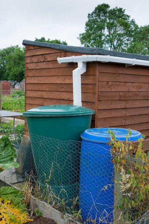Do allotments have water supplies?