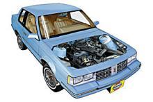Pontiac 6000 1982 - 1996