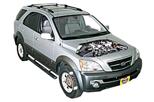 complete coverage for your vehicle