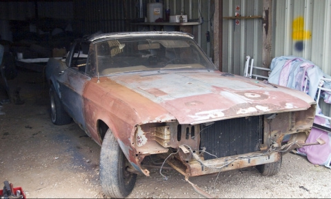 Barn Find Shelby Mustang Fastback