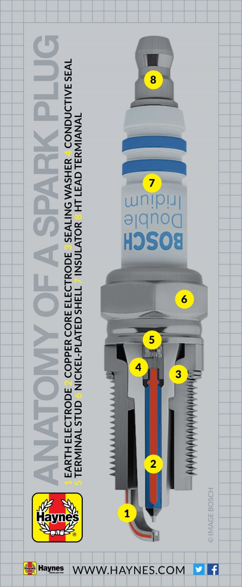 What s a spark plug (and what does it do)?