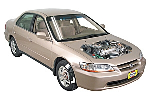 Checking tire pressures Honda Accord 1998 - 2002 Petrol 3.0 V6