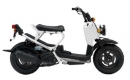 Honda PS250 Big Ruckus