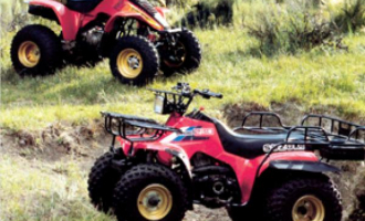 Print & Online Suzuki ATV Repair Manuals - Haynes Publishing